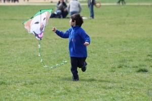 blossom-kite-festival