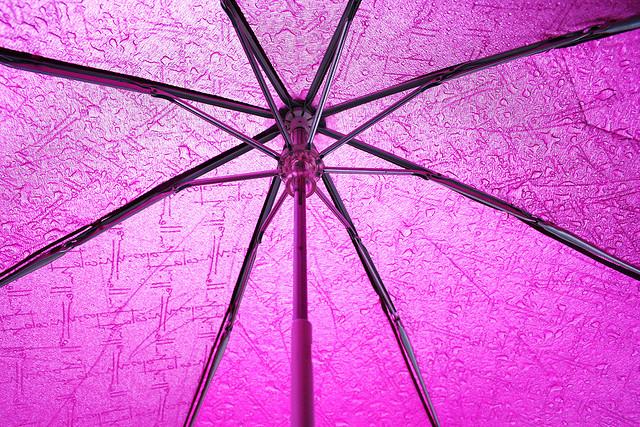 pink-umbrella