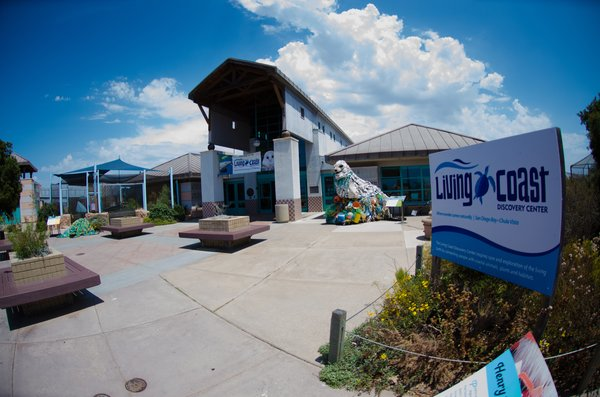 Living Coast Discovery Center by Wil G
