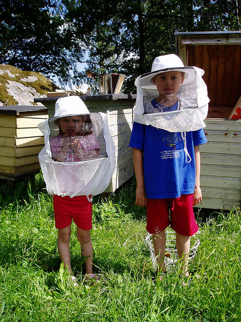 Mats Hagwall bee kids