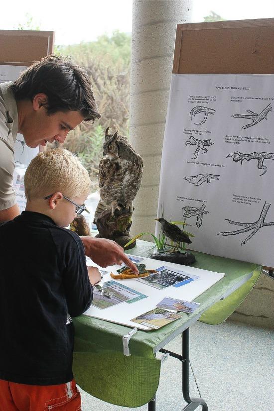 San Elijo Nature Center Activities for Kids