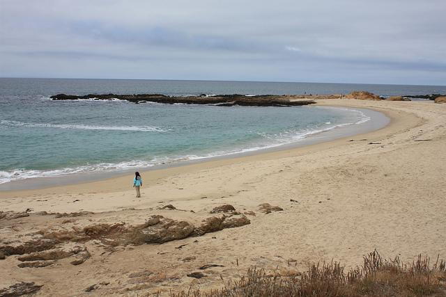 bean-hollow-beach