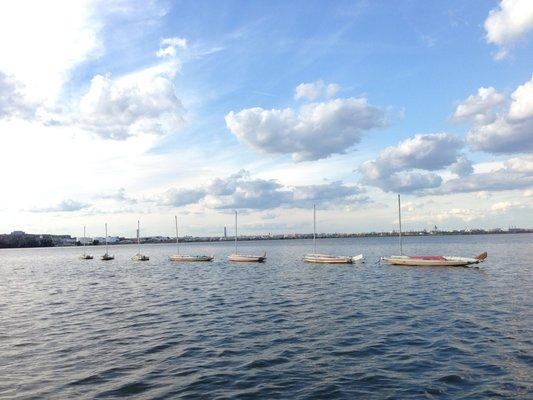 washington-sailing-marina