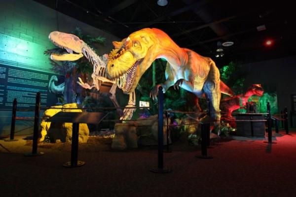 OMSI T Rex