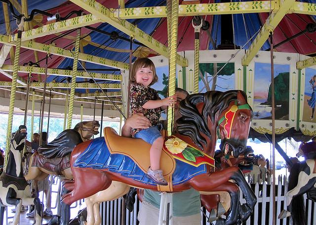 wheaton-regional-carousel