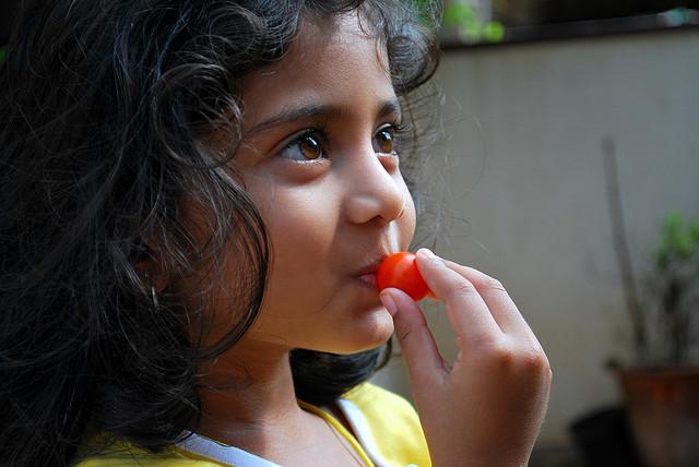 Kid_cherry_tomato