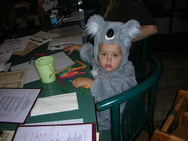 koala_kids_menu_bar