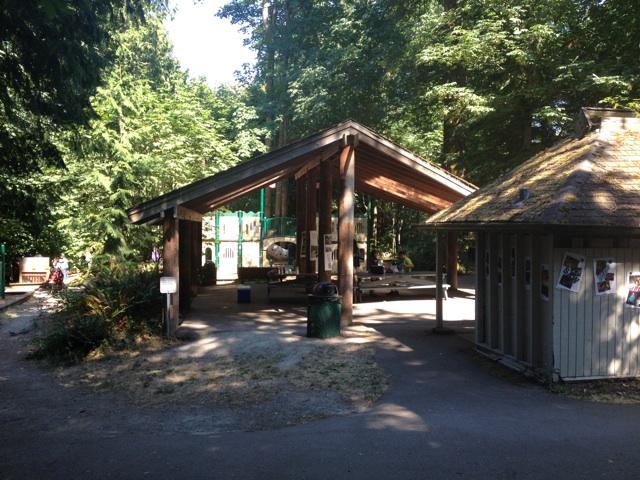 Picnic Area at Adventure Playground