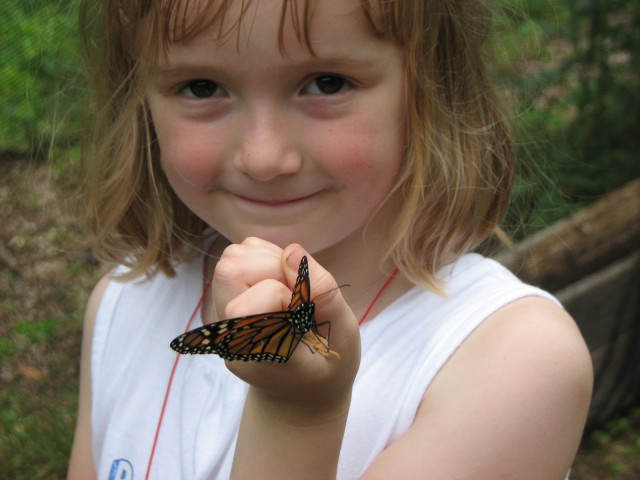 Greenburgh Nature Center girl and butterfly