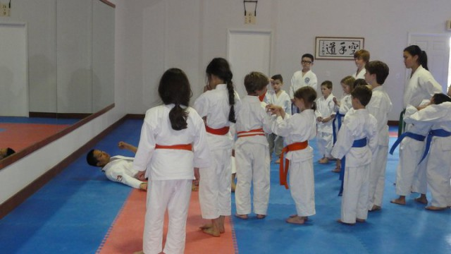 washington karate