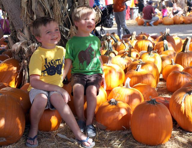 irvine park pumpkins1