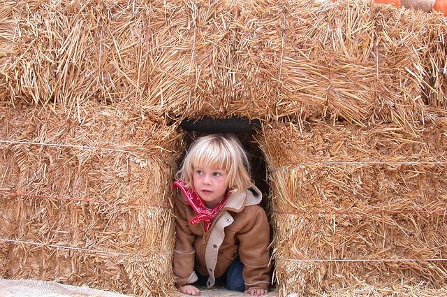 kid-haystack