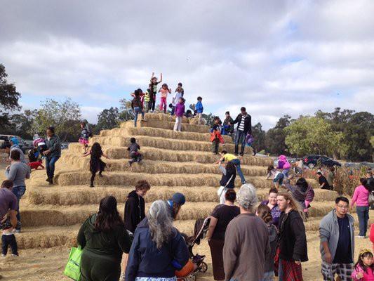 Ardenwood hay pyramid