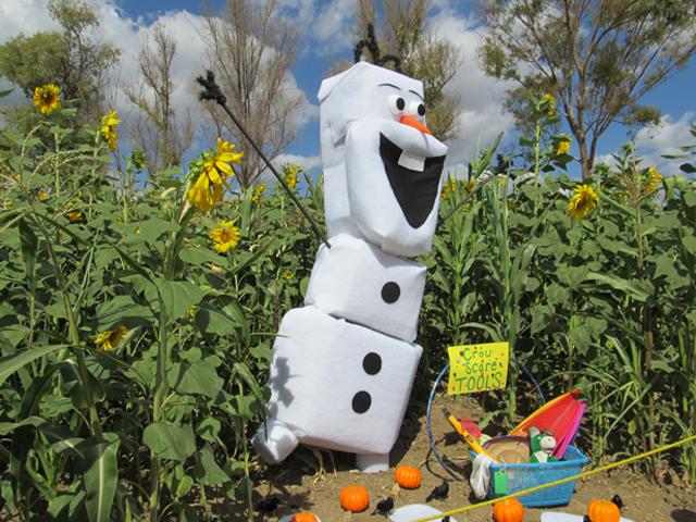 Lombardi-Ranch-Olaf-Scarecrow