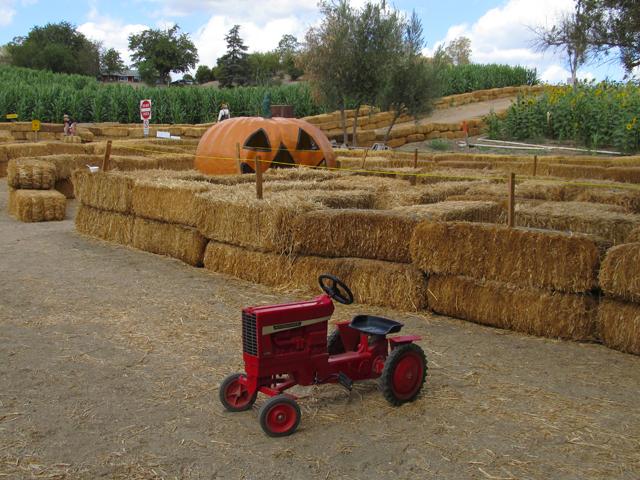Lombardi-Ranch-Tot-Maze