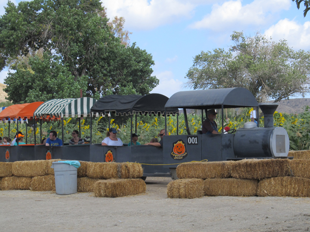 Lombardi-Ranch-Train-Ride