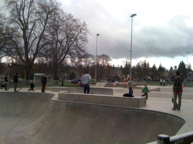 Lower Woodland Skatepark