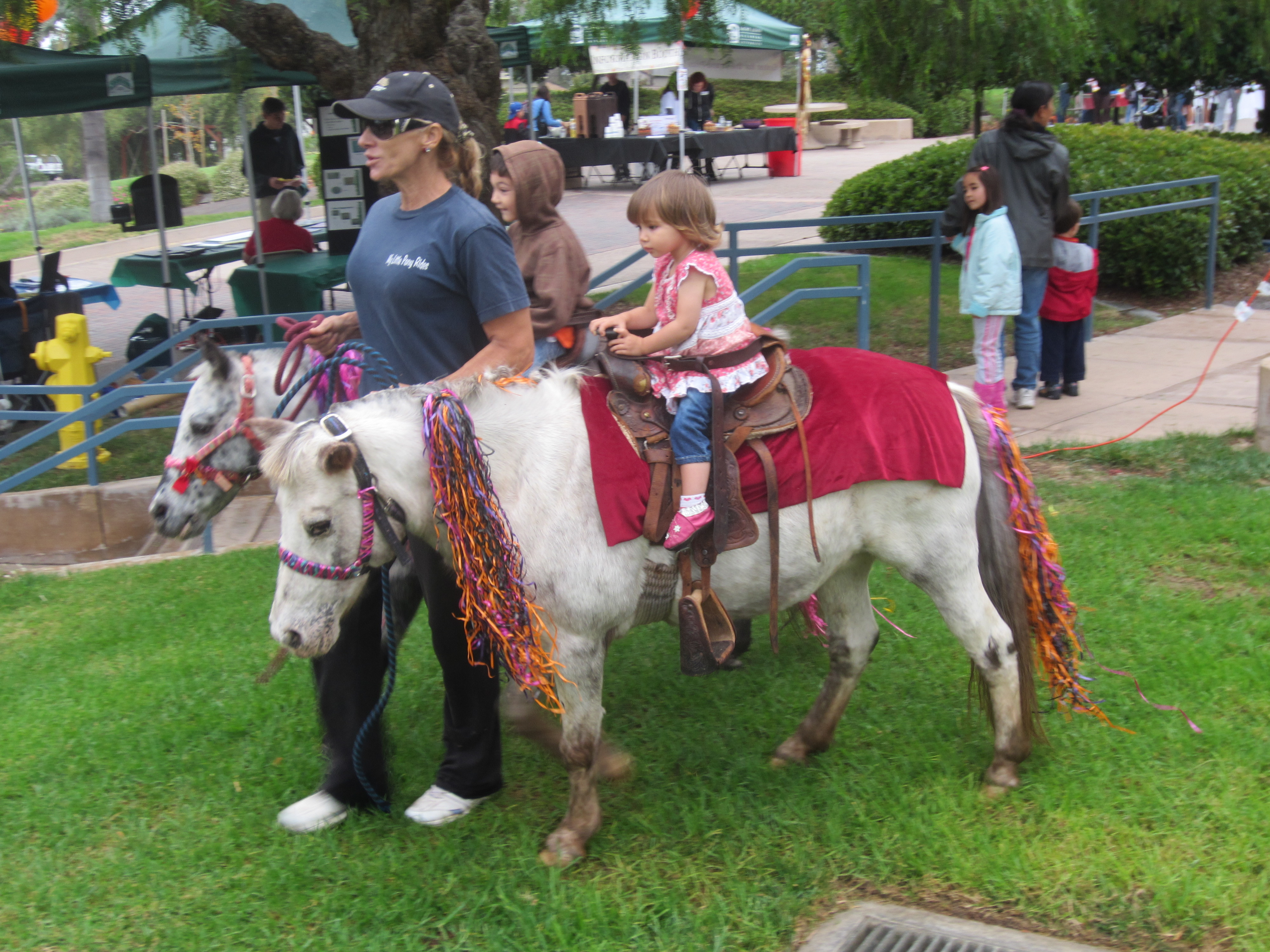 PLNU fall festival pony ride