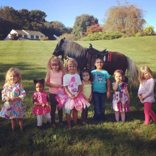 fairwinds-farm-horses