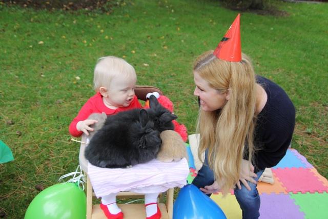 Bunnies for Birthdays