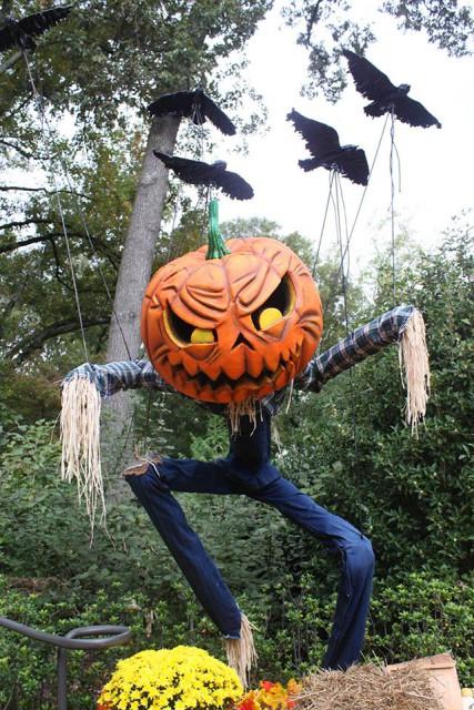 ScarecrowGarden