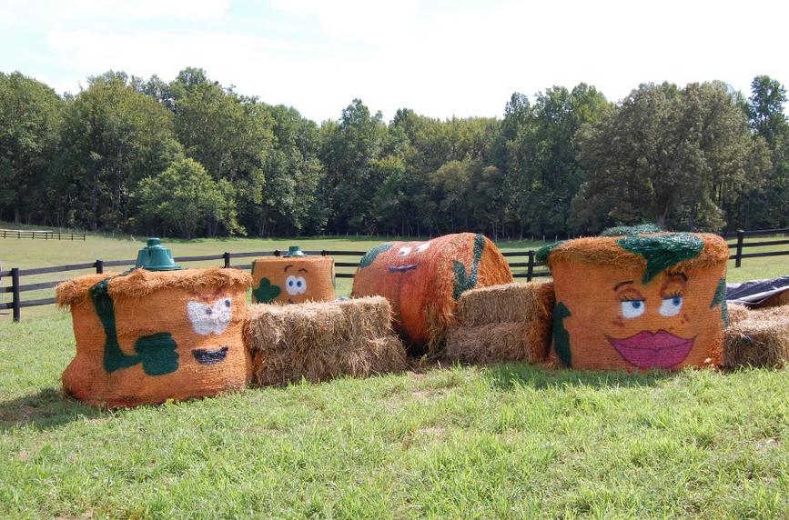 montpellier-farm-hay