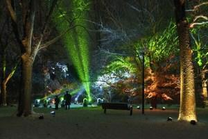 Morton Arboretum Illuminations Lighting Display in Snow
