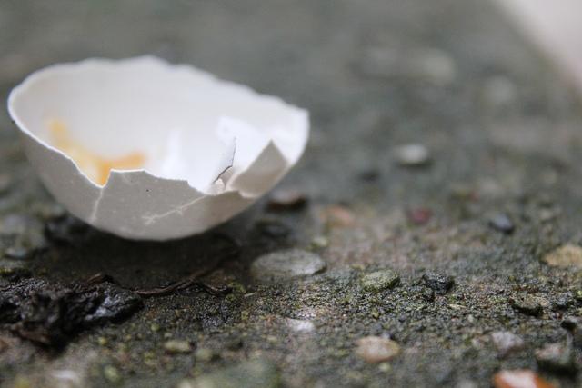 egg-sidewalk
