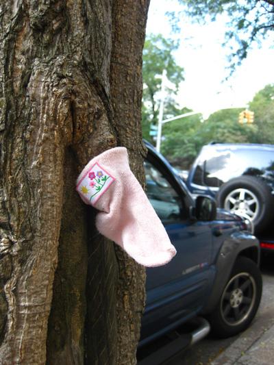 sock-missing