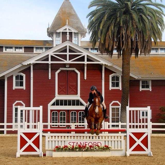 red_barn_stanford_horses