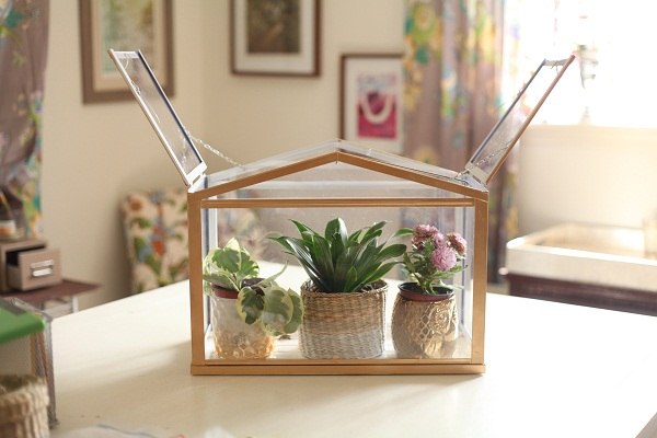 Gold-greenhouse-22
