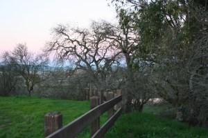Shadow Cliffs 2 - Pleasanton
