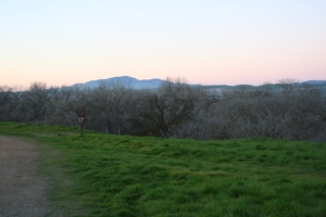 Shadow Cliffs - Pleasanton