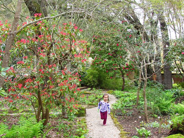 child at filoli gardens