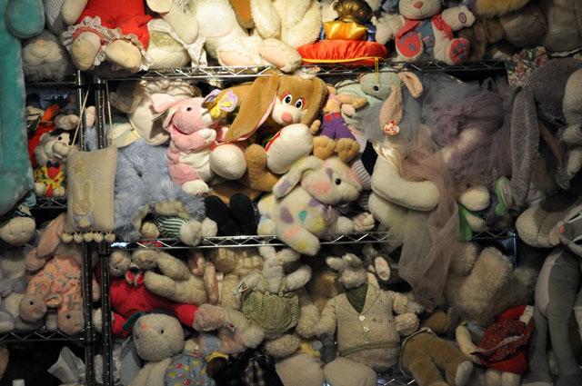 bunny museum 4