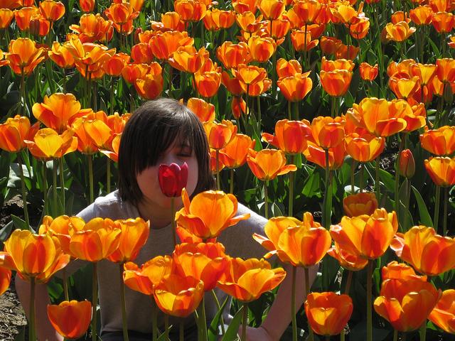 kids-tulips