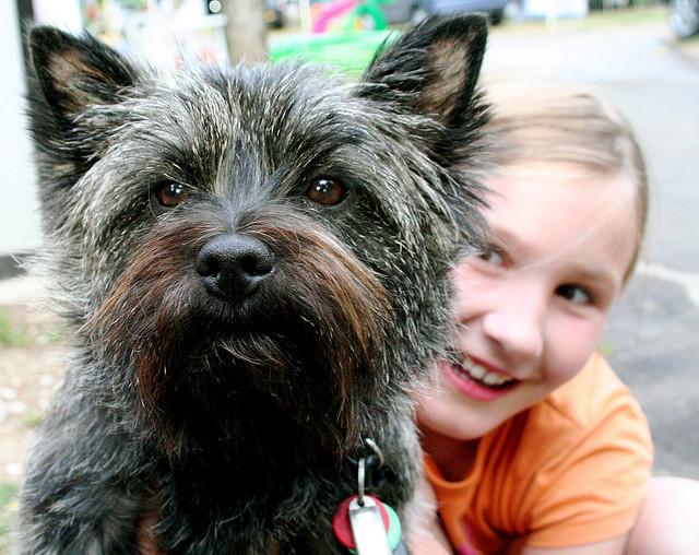 dog_and_girl