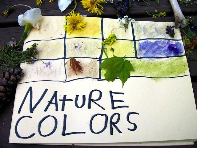 natureart_BeckyBowersSchapel_wildflowercrafts_wildflowers_national_redtricycle