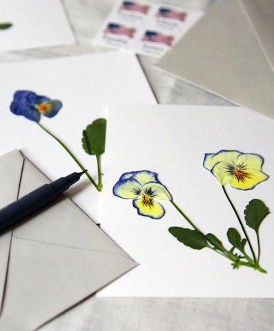 pressedflowerart_erinboyle_wildflowercrafts_wildflowers_national_redtricycle