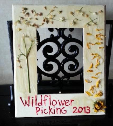 wildflowerframe_kelleygrant_wildflowercrafts_wildflowers_national_redtricycle