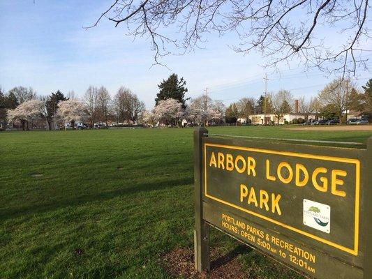 Arbor Lodge Park - Stephanie A.