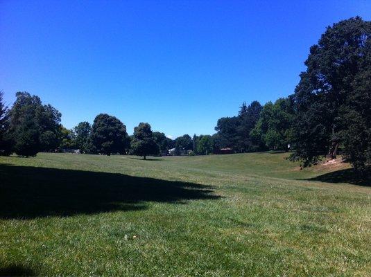 Fernhill Park - Mandi C.