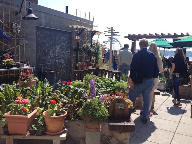 Market Garden at Pike Street