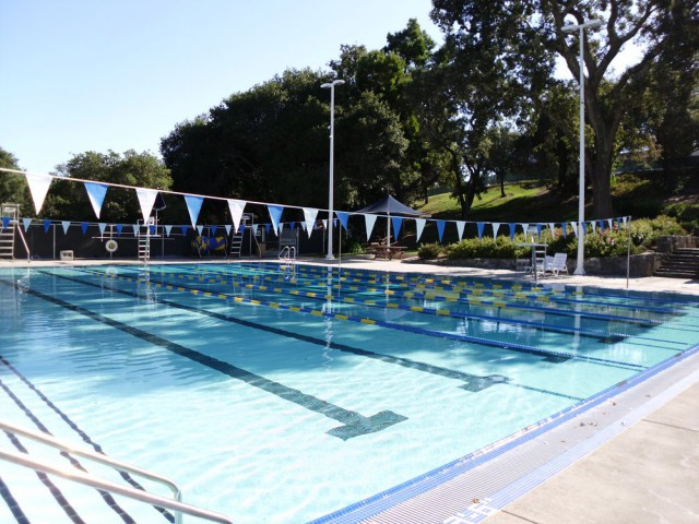 hamilton Pool Novato