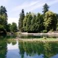 http://www.yelp.com/biz_photos/laurelhurst-park-portland?select=ij5A7oGShZ8_clunvgu6MA