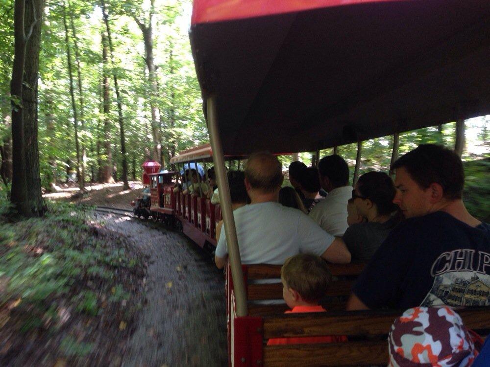 burke-lake-train