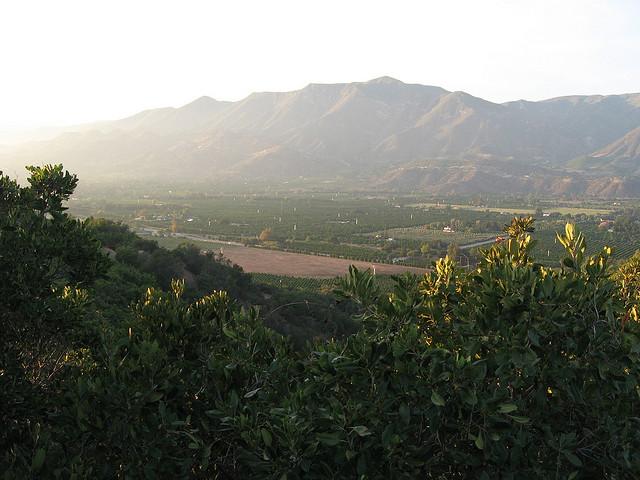 Ojai-Landscape-Town