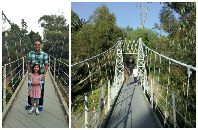 spruce st suspension bridge