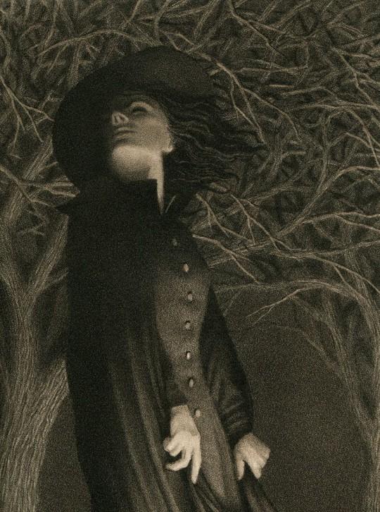 widows broom timechaser via flickr cc