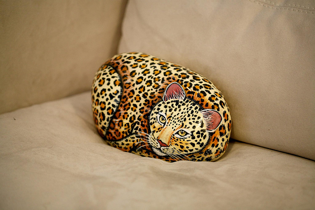 cheetahrock-cc-sharynmorrow-flickr